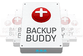 backup wordpress con backup buddy guida in italiano