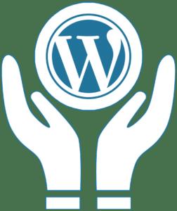 manutezione sito web