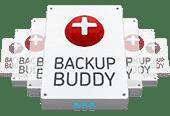 backup wordpress con backup buddy guida in italiano