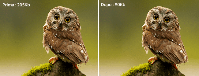 Come comprimere immagini png e jpg senza perdere la qualità