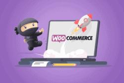 Capire perchè WooCommerce è lento e renderlo più veloce
